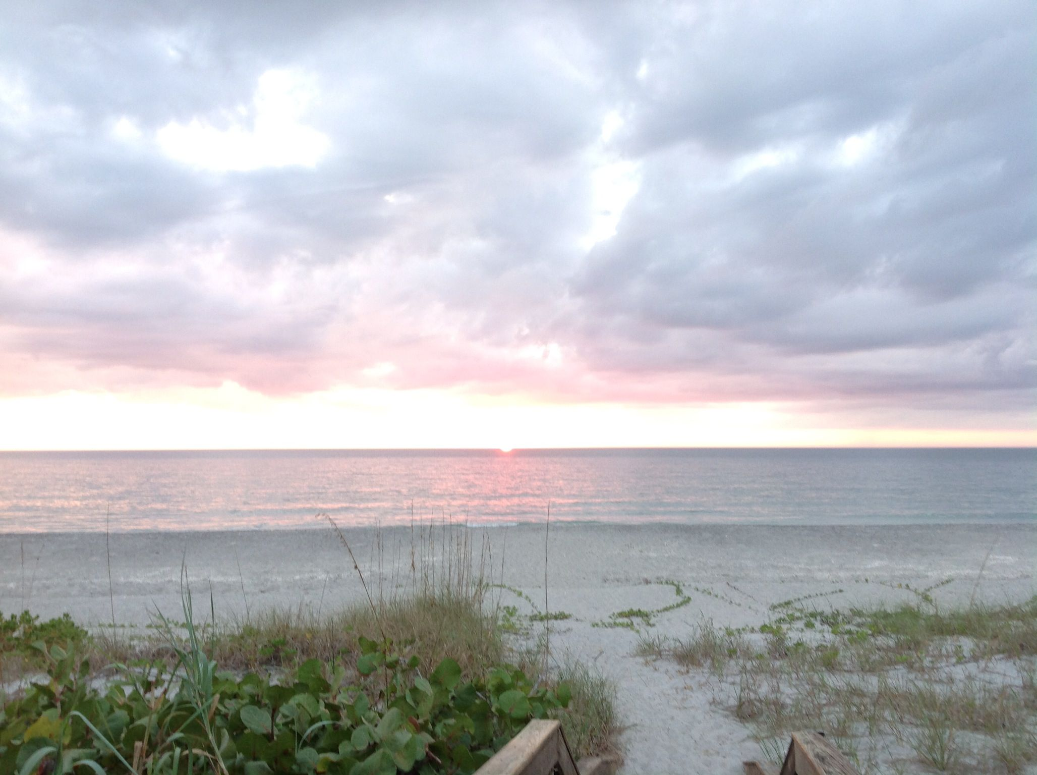 Manasota key beach | Florida vacation, Beach, Trip