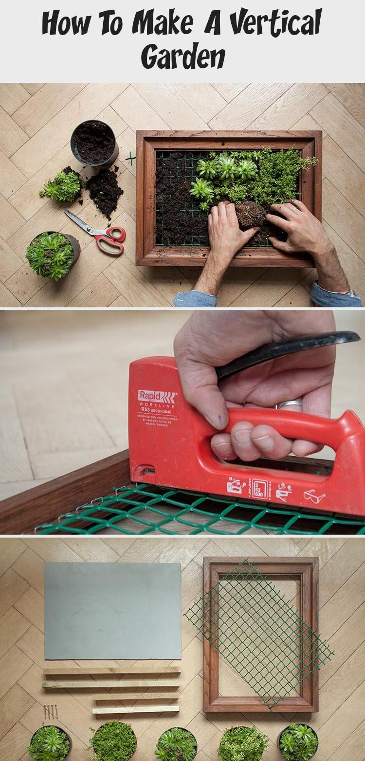 How To Make A Vertical Garden With Images Vertical Garden Vertical Garden Diy Patio Herb Garden