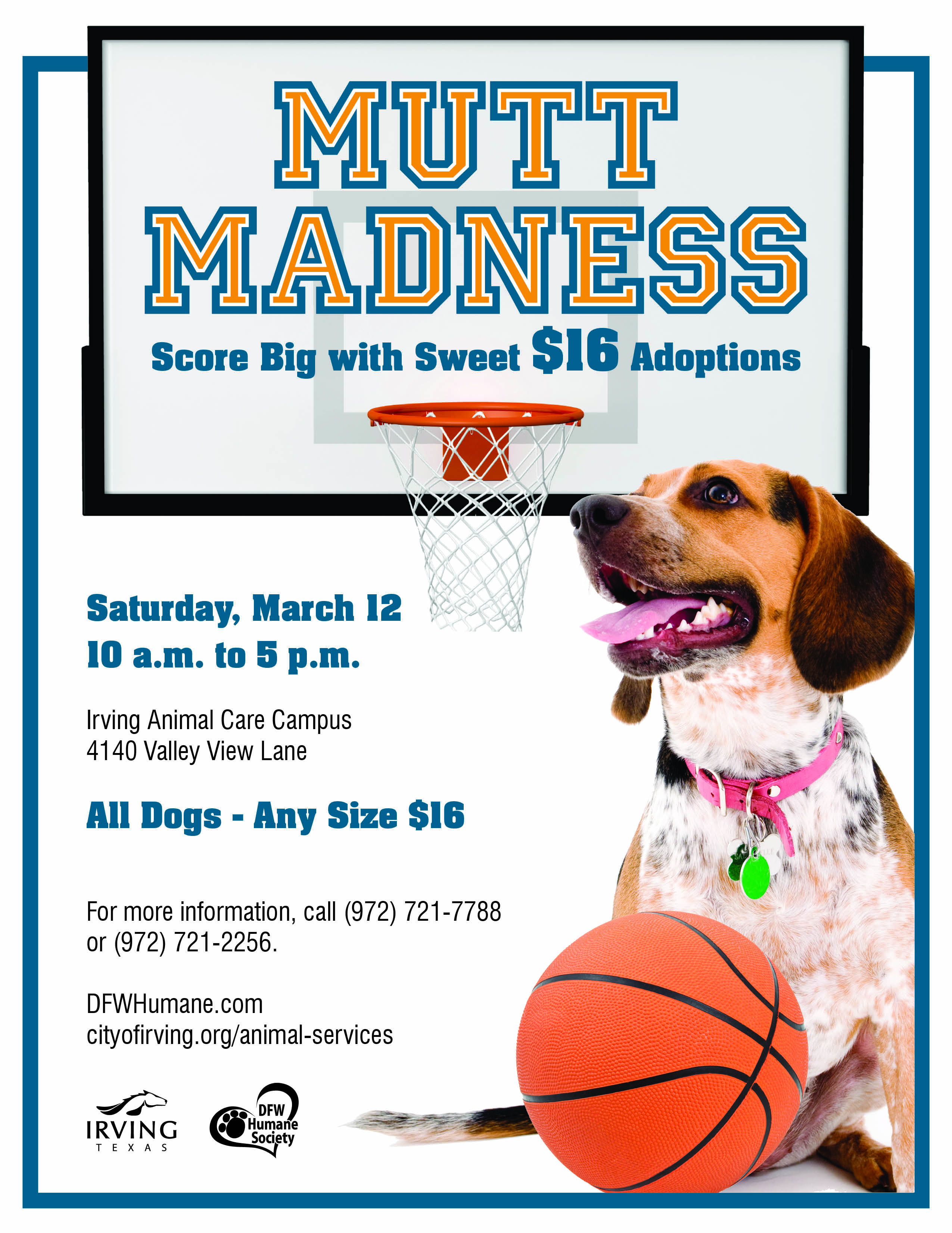 Sweet 16 adoptions on Saturday, March 12 from 105 No