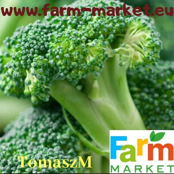 #unique #food #products #ready #meals #fruits #vegetables and many more #poland #germany #france #england #uk #spain #italia #portugal #russia #sweden #canada #usa #mexico #japan #korea #china #indonesia #tailandes #uae #qatar #india #australia
