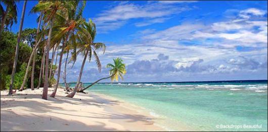 Backdrops Tropical Beach 13a