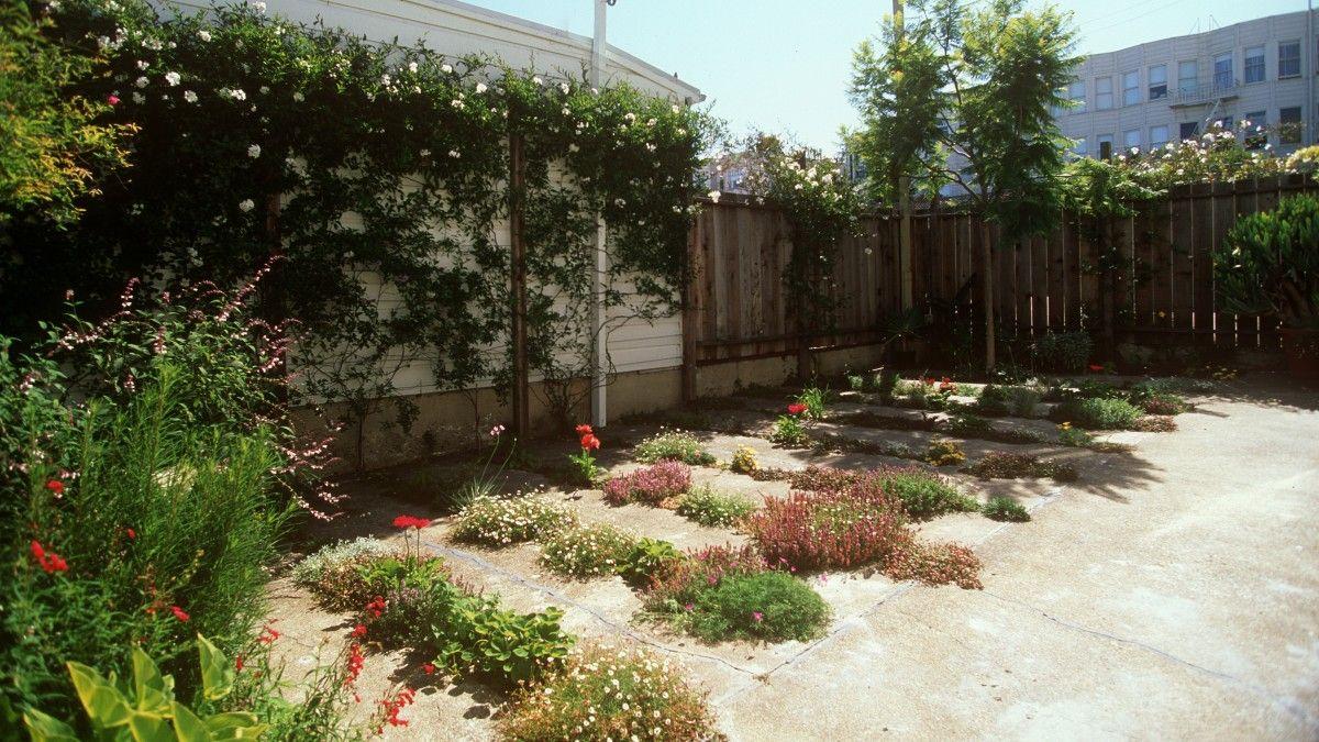 Crack Garden (3) | Landscape Design Commercial | Pinterest | Gardens ...