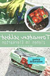 Das Pflanzen von Tomaten ist großartig, weil es nicht schwierig ist. Es noch schlimmer machen …   – uncategorized