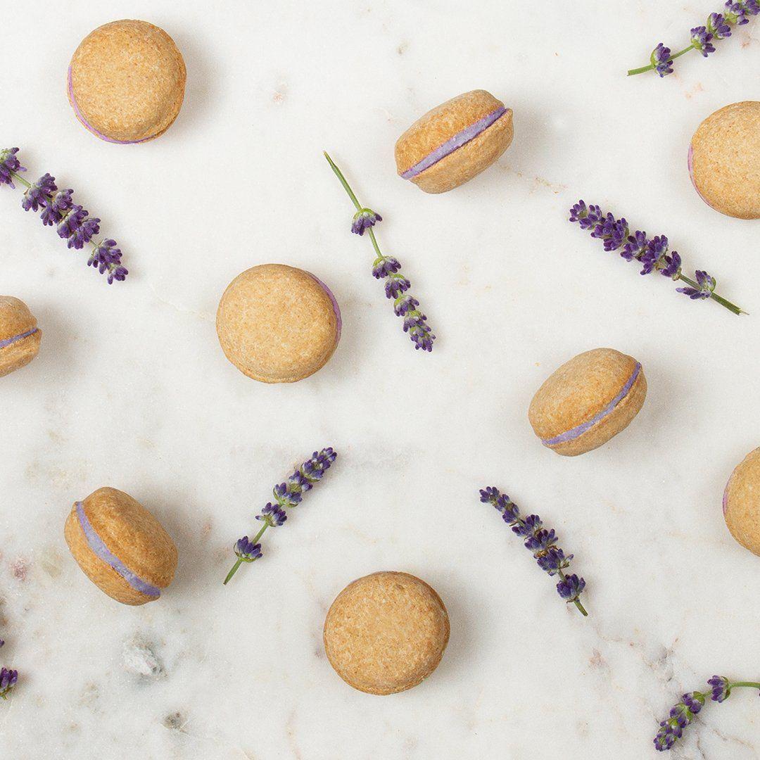 Lavender Dog Macarons