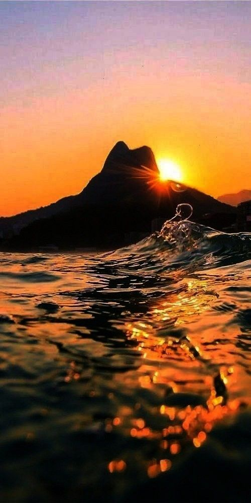 Day…Surfs up  of the Day…Surfs up  DIAMONDS  Source :green world  Dec 6 2019 - 16 new ideas tra