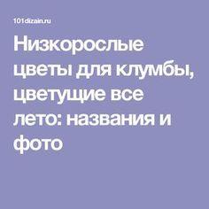 УКРАШЕНИЕ БЛЮД -02. УКРАШЕНИЕ САЛАТОАКУСОК