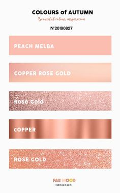 Champagne Rose Gold Color Code Google Search In 2020 Wedding Rose Gold Theme Rose Gold Color Palette Rose Gold Painting