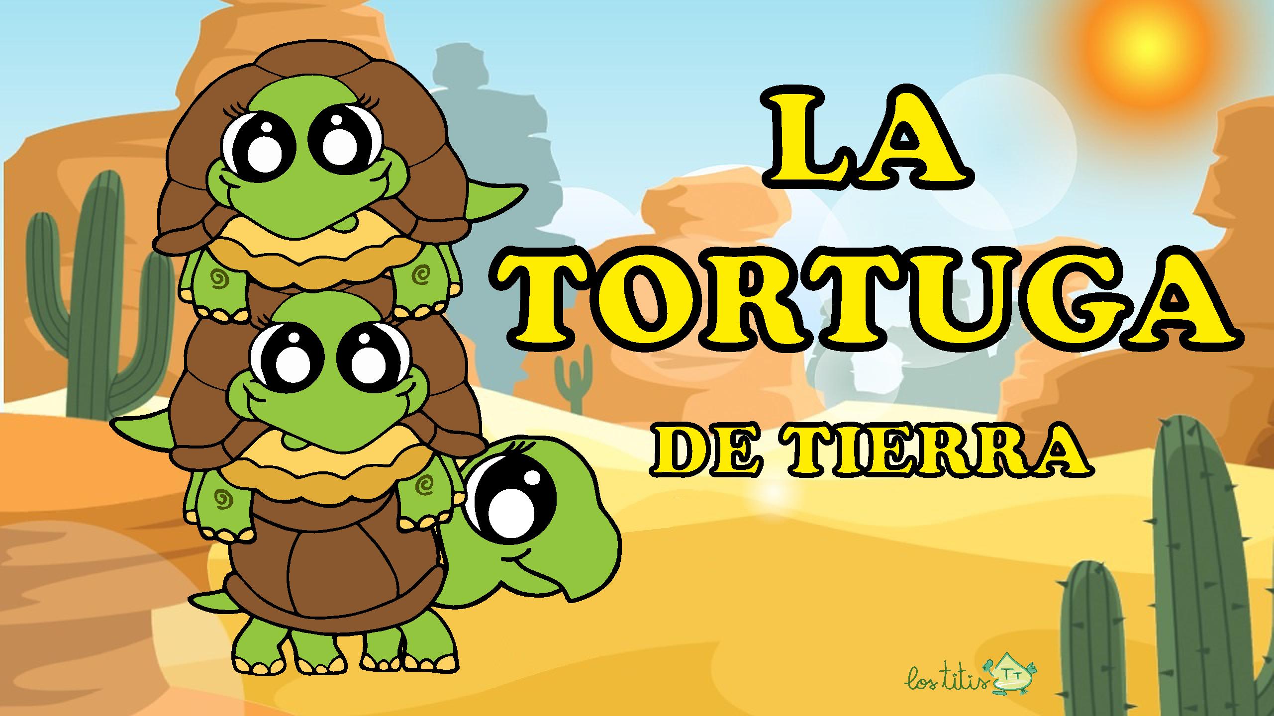 58 Ideas De Características E Información De Los Animales Para Niños En 2021 Niños Animales Caracteristicas De La Tortuga