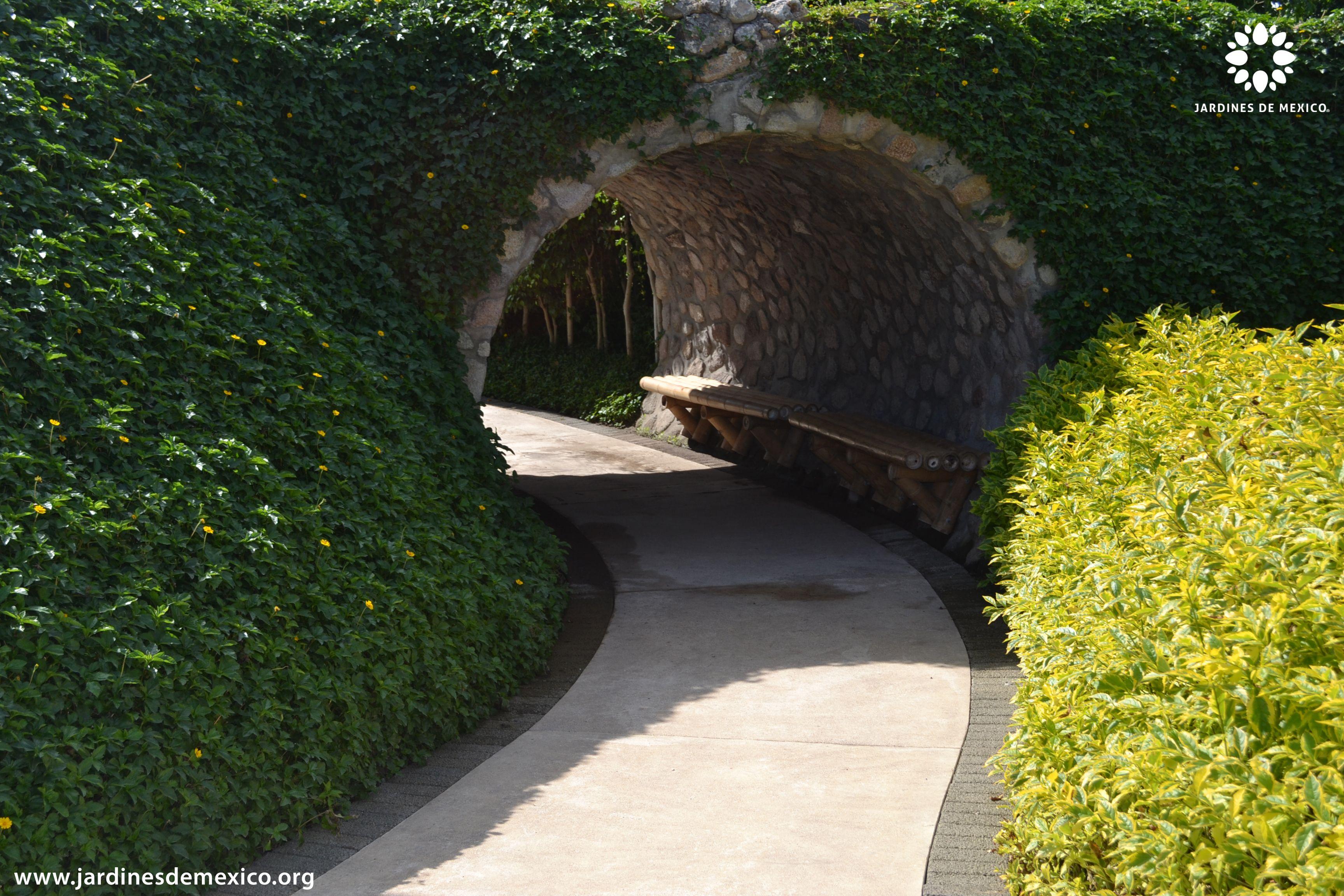"""Caminos del """"Laberinto de los Sentidos"""" en Jardines de México.  Morelos, México. #paisajismo #landscaping  #Turismo #Tourism #Naturaleza #Nature #JardinesDeMéxico.  http://jardinesdemexico.org"""