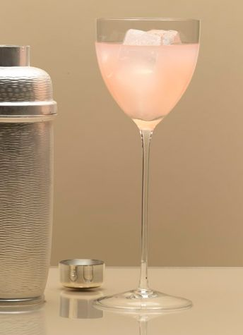 GIN AND GRAPEFRUIT COCKTAIL    In a cocktail shaker combine 1/4 cup each of gin and grapefruit juice, 1 tablespoon dry vermouth and a little crushed ice. Cover the container, shake the mixture well, and strain it into a stemmed glass over ice cubes. Makes 1 drink.