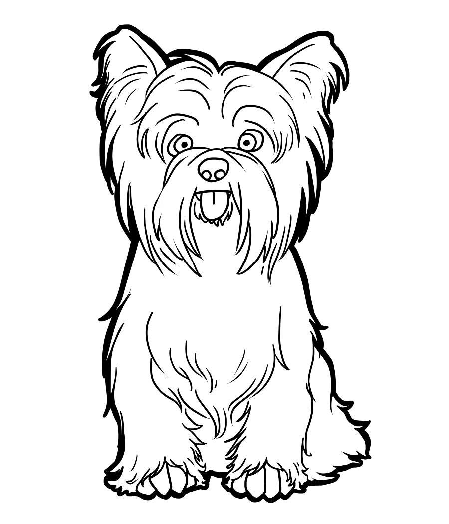 Yorkshire Terrier Puppy Coloring Pages Dog Coloring Page Yorkie Dogs