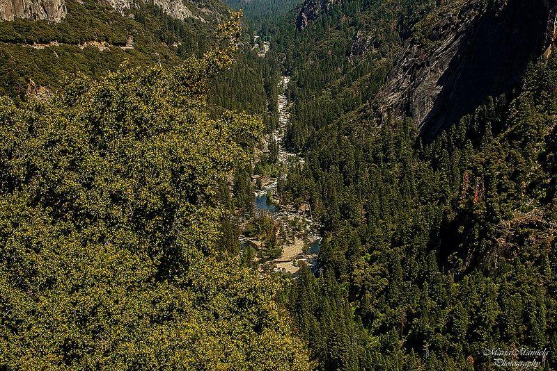 Following the current, Yosemite Park Yosemite park