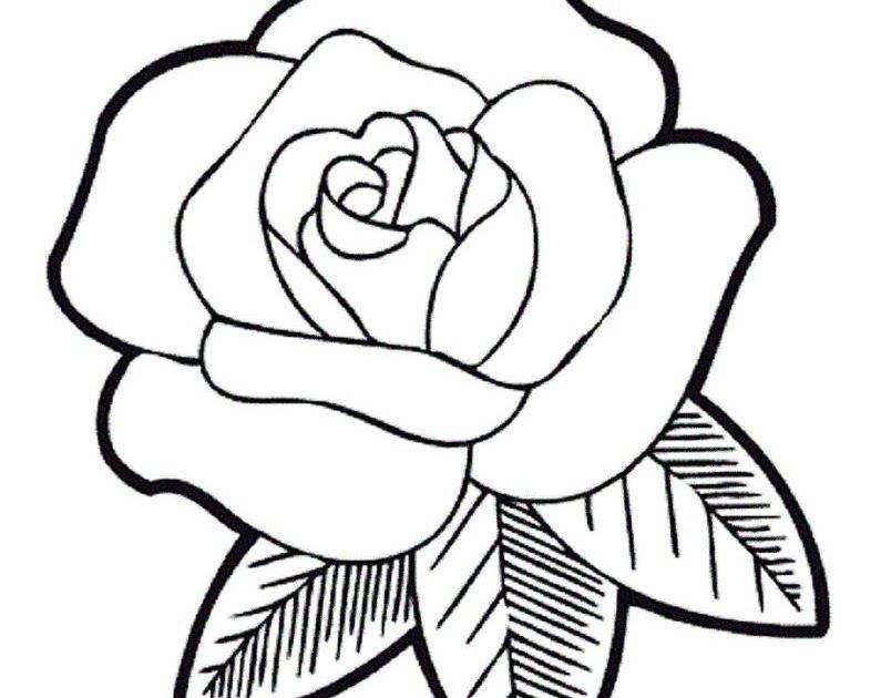 34 Gambar Bunga Mawar Versi Kartun Di 2020 Buku Mewarnai