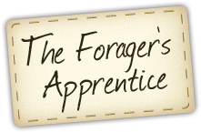 The Foragers Apprentice App.  I don't have a smart phone but here a cool app