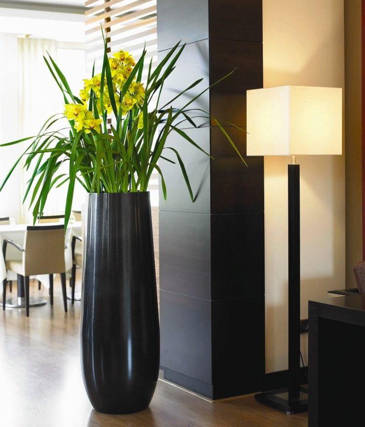 pin von auf stuff i want pinterest blumen garten und pflanzen. Black Bedroom Furniture Sets. Home Design Ideas