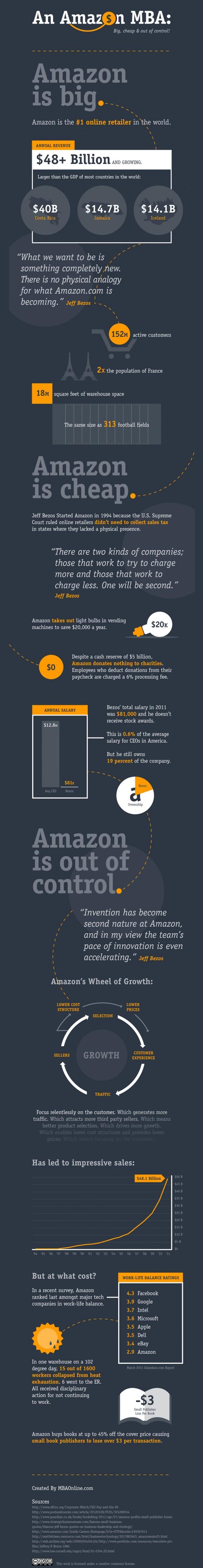Amazon.com: Evil or Genius? [Infographic]