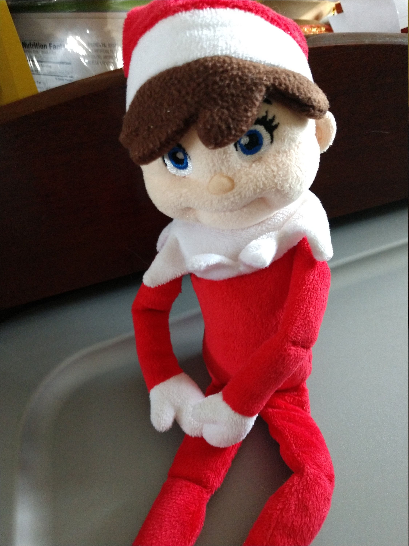 12 Inch Plush Elf On The Shelf Plushee Pal Doll By Labarcdesigns