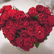 صورة باقة ورد حمراء على شكل قلب Hearts And Roses Flowers Rose