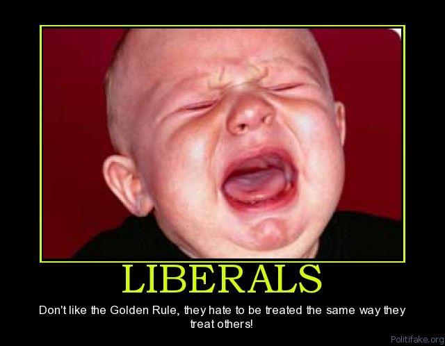 bac32fd81ff7dfceca76ec0184d13c45 tolerant liberal meme google search liberals, snowflakes, a