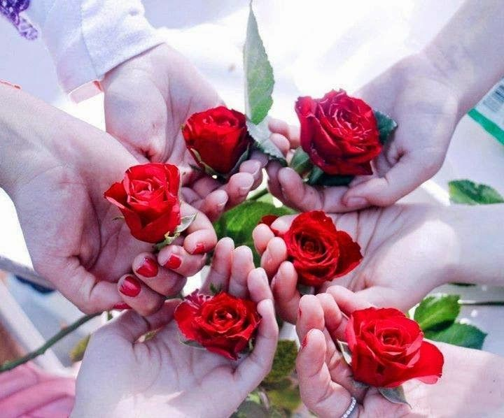 صـــور بــــلا حـــدود ابسط هديه اقدمها لكم اجمل باقات الورود اكثر من 200 صوره تحميل عادى او فى مجلد يحوى اكثر من 300 صوره على ميديا فاي Rose Flowers Bouquet