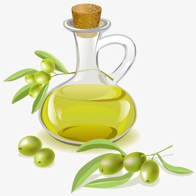Aceite De Oliva Organico Ingredientes De La Cocina Aceitunas Olive Branch Lecythus Jarra De Aceite De Oliva Aceite De Oliva Aceite Aceitunas