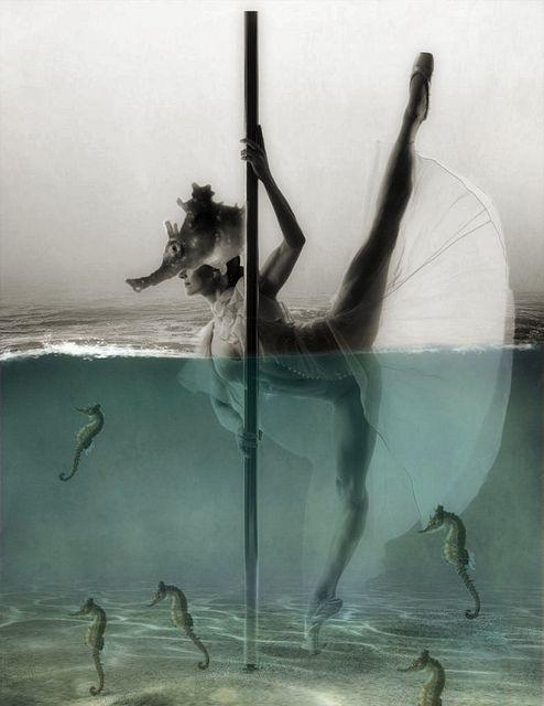 The Sea Horse Queen, via Flickr.