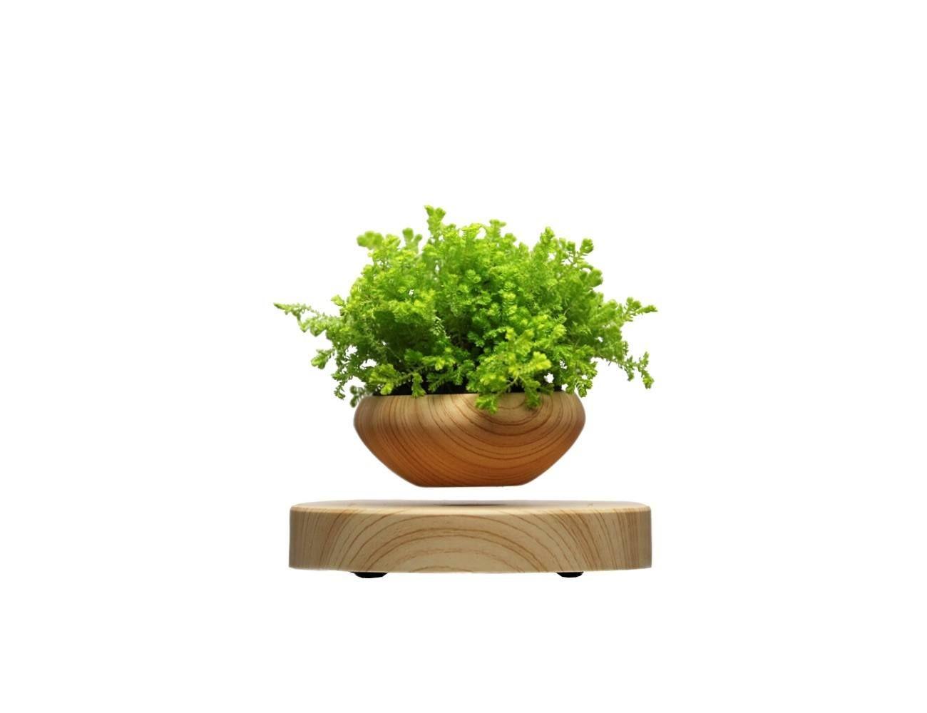 Plante Haute En Pot levitating indoor plant pot | gros pot de fleur, suspension