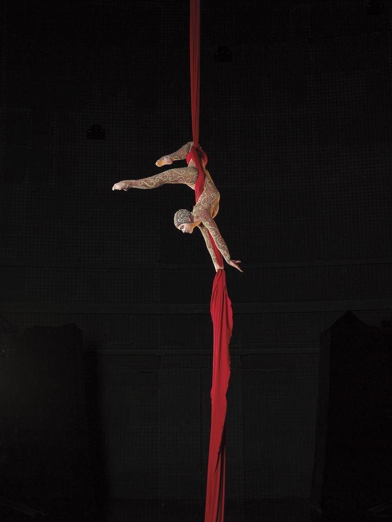 La nouba aerial silks circus art aerial dance