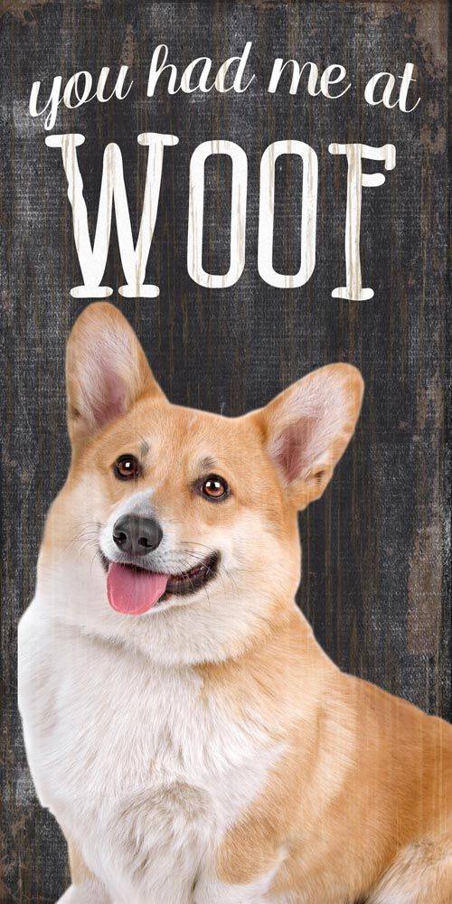 Corgi Sign You Had Me At Woof 5x10 Pembroke Corgi Pembroke