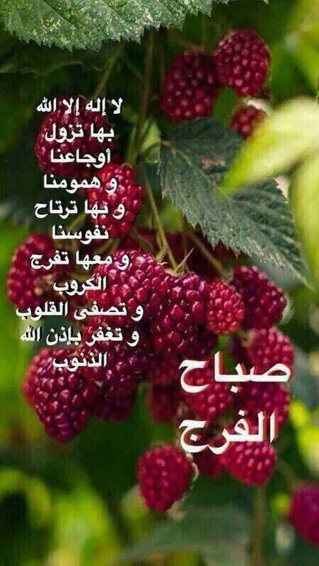 صباح الفرج Good Night Messages
