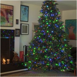 12 Ft 1 500 Dual Color Leds Pre Lit Frasier Tree Switchable Between Warm White And Also Pre Lit Christmas Tree Fake Christmas Trees Colorful Christmas Tree Christmas tree with dual lights white and multicolored