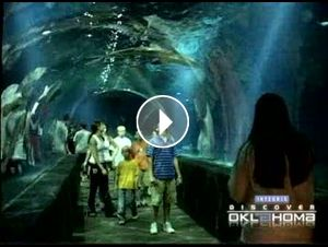 The #TravelOK.com video gallery features almost 700 videos showcasing #Oklahoma attractions and destinations.