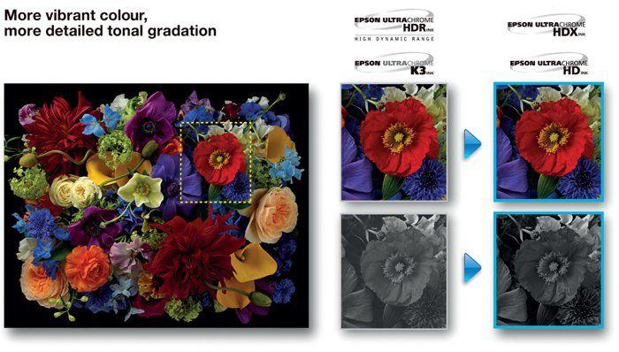 Оригинальные пигментные чернила Epson Ultrachrome HD из 8 ...
