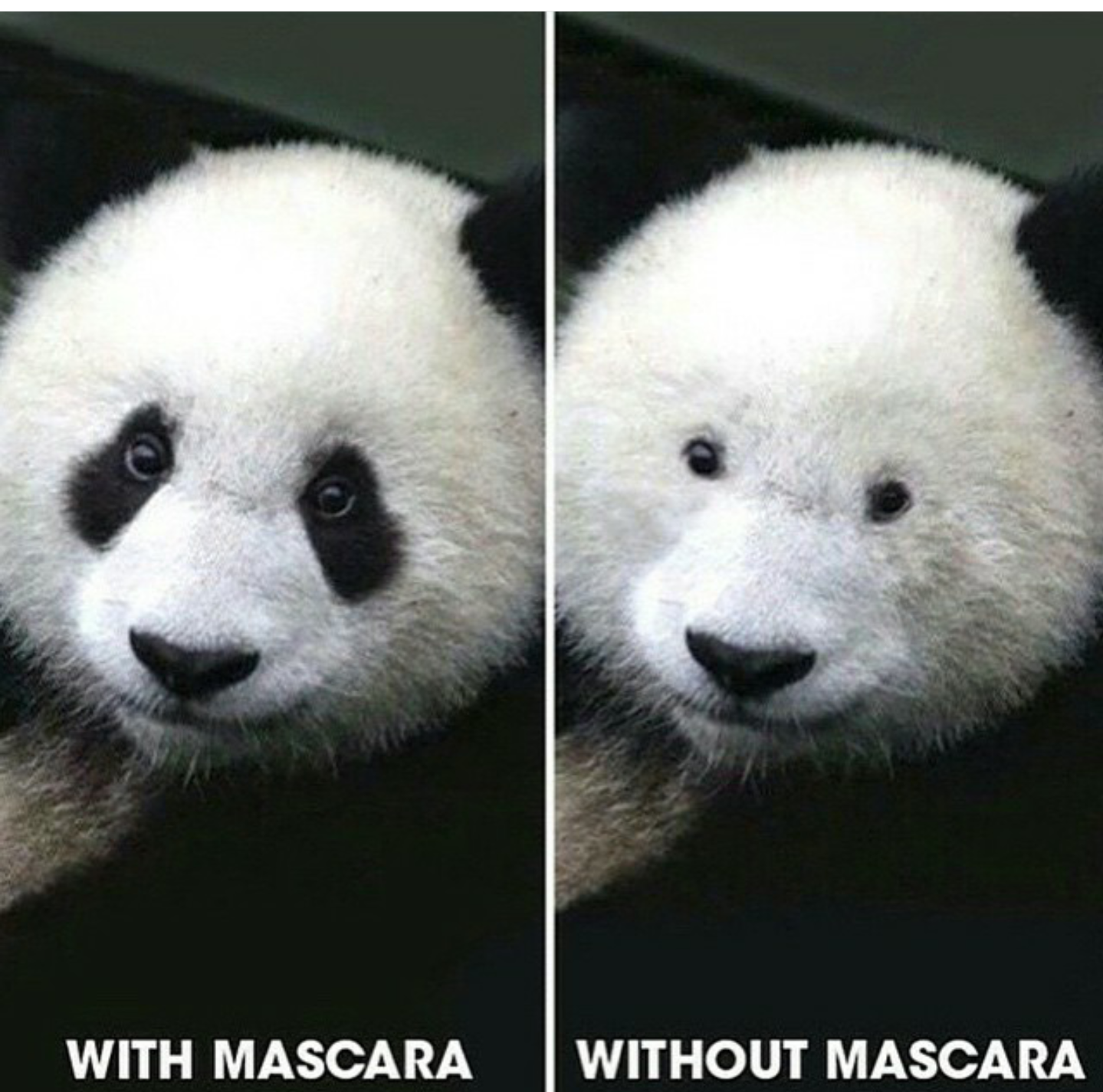 With or without mascara! #kapakkizi #kesfeticindekiguzeli ...