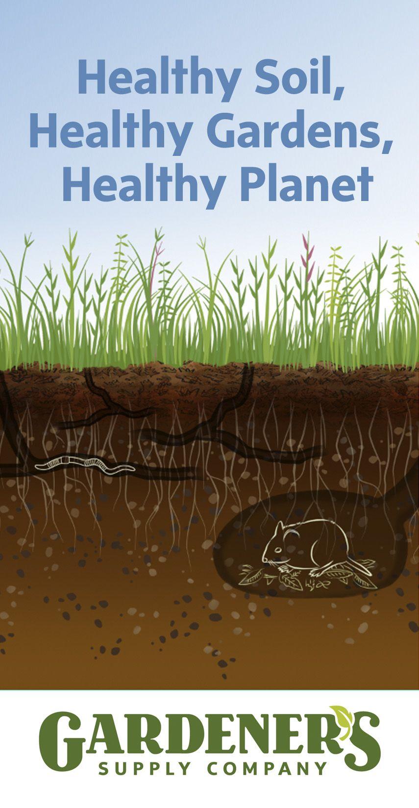 All About Soils Garden Soil Soil Garden Supplies