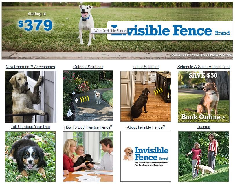 Invisible Fence Brand System Installation Want An Underground Fence Installed In Your Yard 99 5 Success Rate Dog Fence Invisible Fence Dogs