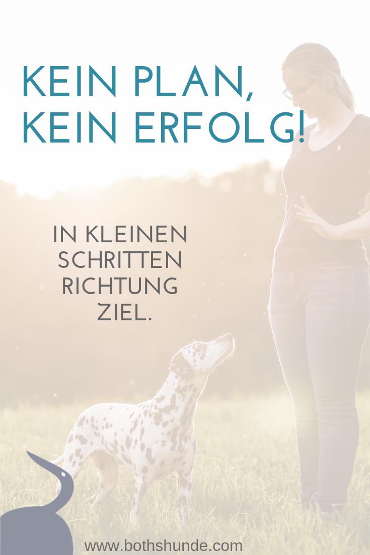 Effektives Hundetraining Hundchen Training Hundetraining Hundchen Ubung