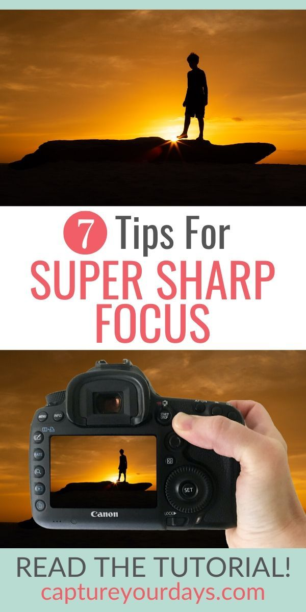Blurry pictures can be a big problem for the photography beginner.  In photography focus is one of the most important skills in learning to take better pictures.  If you're learning photography and need photography help this photography lesson will be a game-changer.  Click to read 7 camera tips on How To Get Super Sharp Focus In Your Photos.  #photographytips #photographytutorials #childphotographytips #camerasettings #beginnerphotographer #photography101 #dslr #dslrphotography