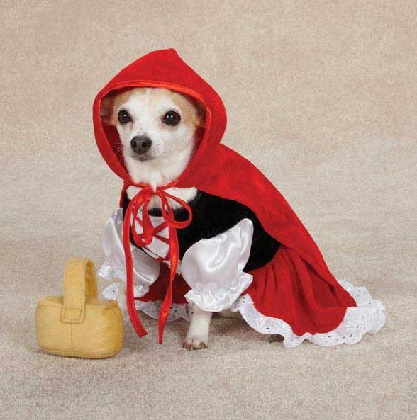 Details About Red Riding Hood Costume Pet Halloween Fancy Dress