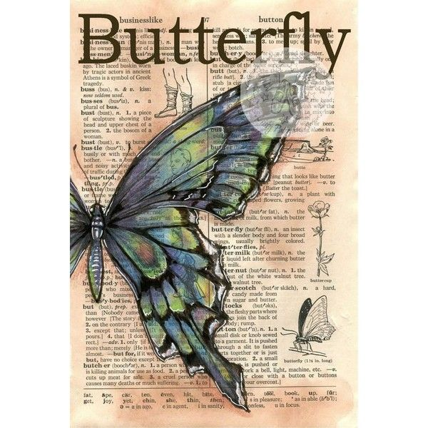 Flying Shoes Art Studio NEW LARGE BUTTERFLY DRAWING Liked On Polyvore Featuring Home