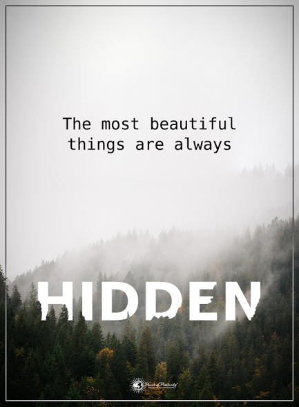 The Most Beautiful Things Are Always Hidden Powerofpositivity