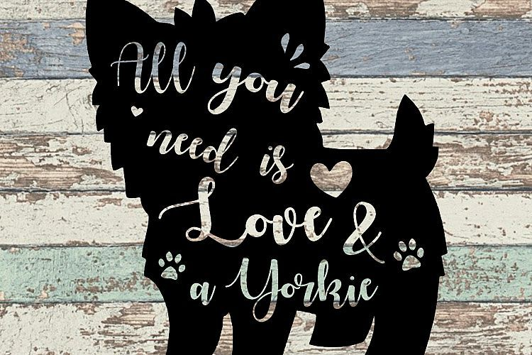 Download All You Need Is Love and A Yorkie SVG (With images) | All ...