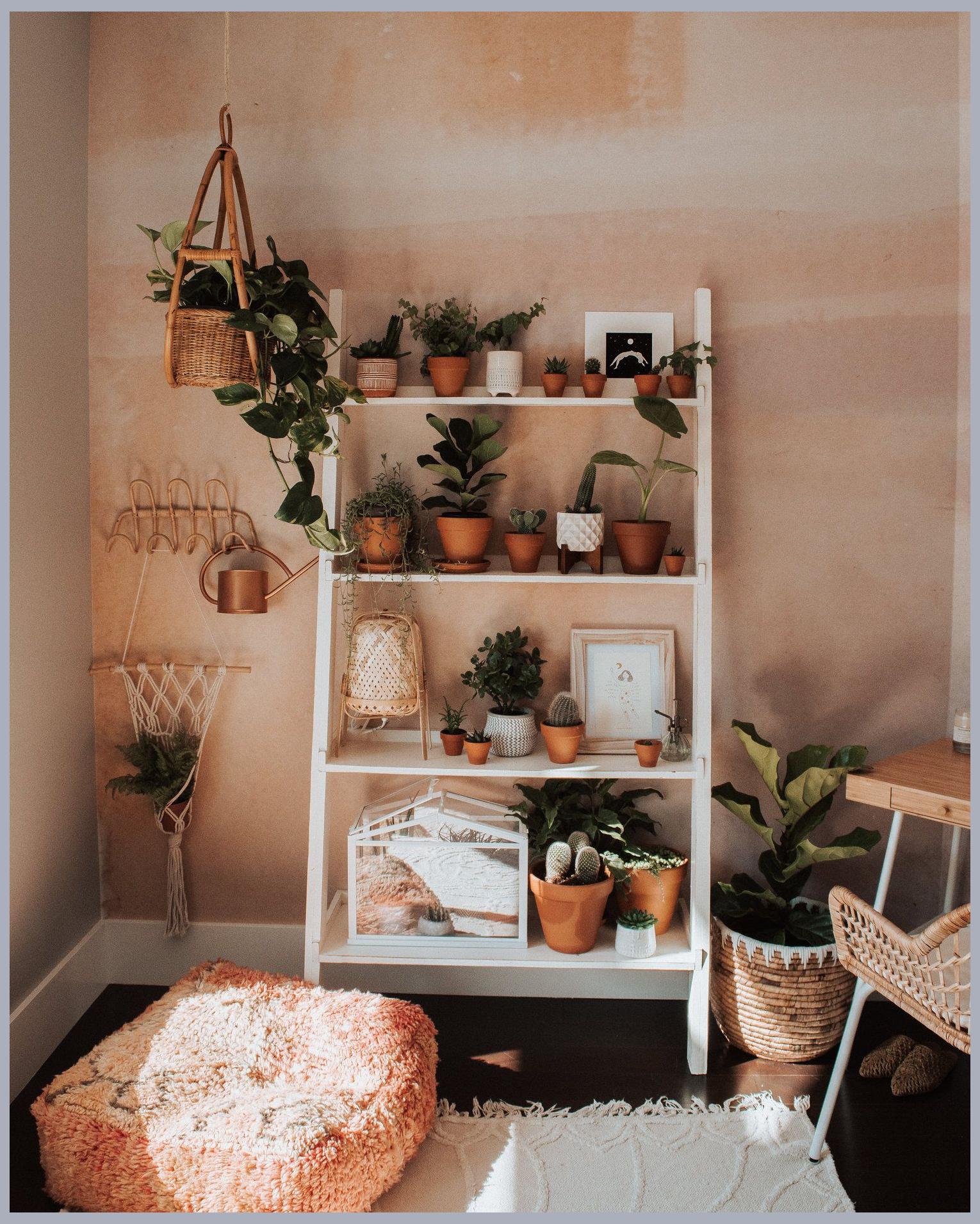 Excellent Gratuit Plantes Aesthetic Style Si Vous Avez Du Mal A Vous Endormir Il Pourrait Idee Deco Salon Zen Deco Chambre Zen Idee Deco Salon