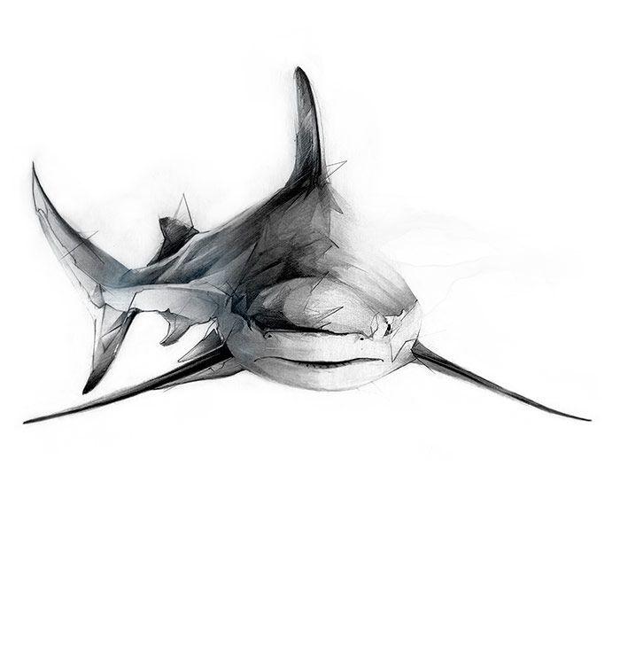 http://alexismarcou.com/project/items/sharks | Tattoo | Pinterest ...