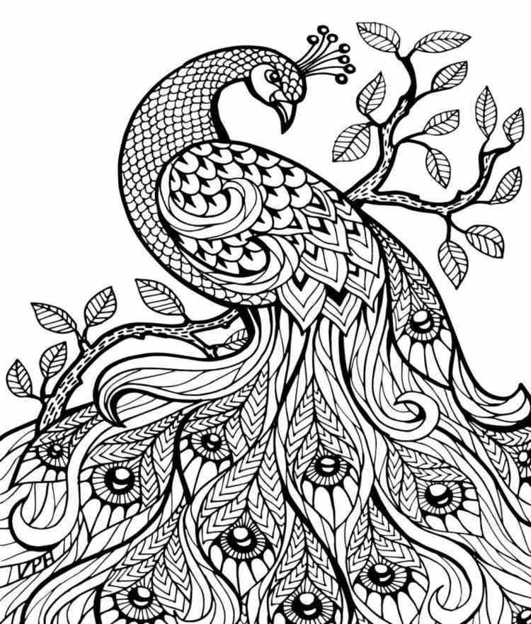 Pin De Gerty Steidtmann En Para Pintar Mandalas Animales Mandalas Para Colorear Mandalas Para Colorear Animales
