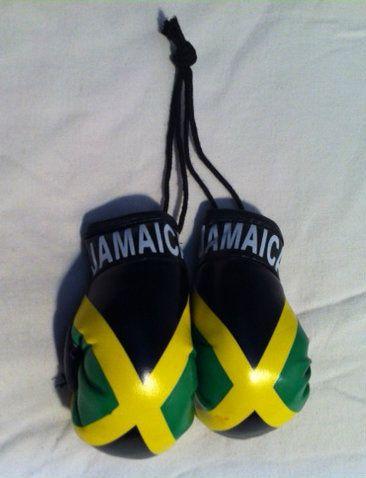 Reggae Land Muzik Store - Black Green And Gold   Jamaica Flag Mini Boxing  Gloves c4caaf07fc56