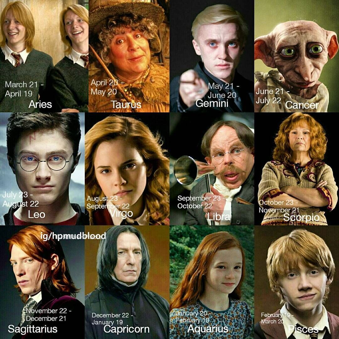 Pin By Michaela R On My Favorite Harry Potter Zodiac Harry Potter Universal Harry Potter Zodiac Signs