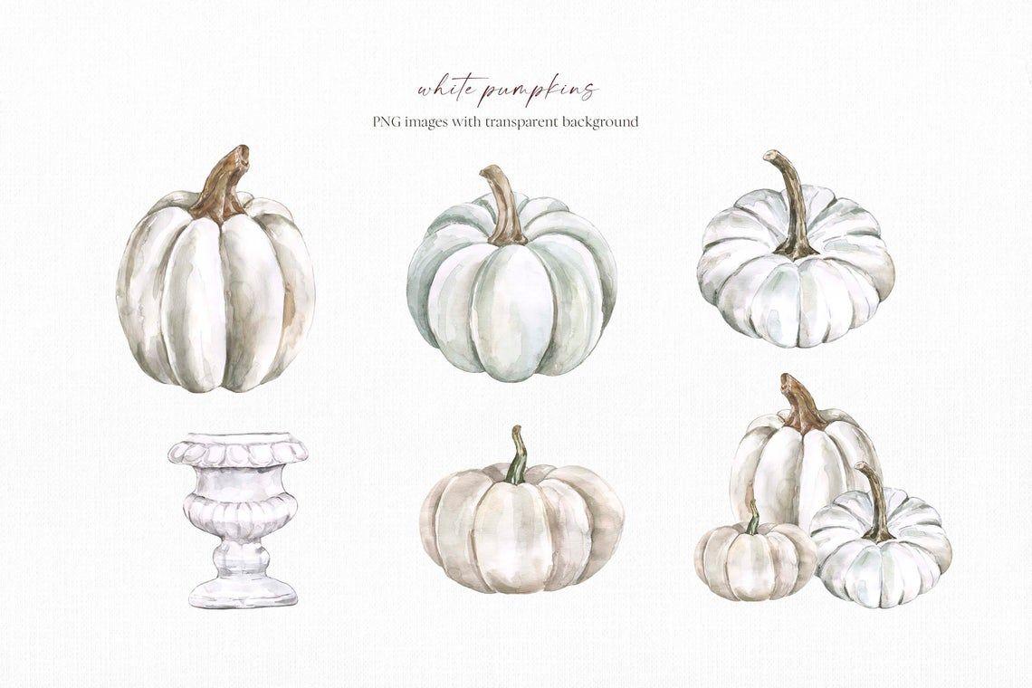 White Floral Pumpkins Clipart Watercolor Fall Arrangements Etsy