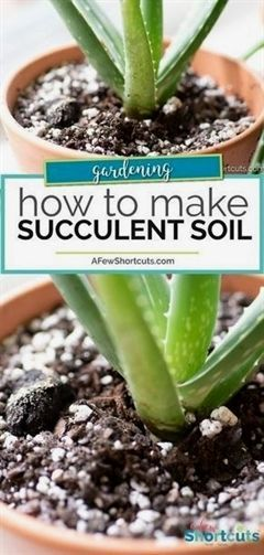 How to Make Succulent Soil,  How to Make Succulent Soil,