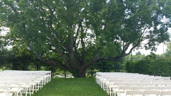 All Set Up For The Outside Ceremony In The Wedding Garden In Front